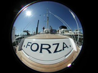 The Forza